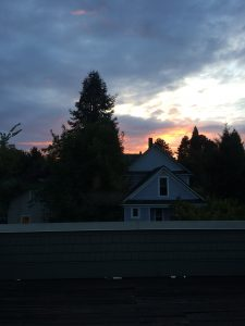 orange sunrise sky through dark clouds, behind a sillouette of fir trees and a house